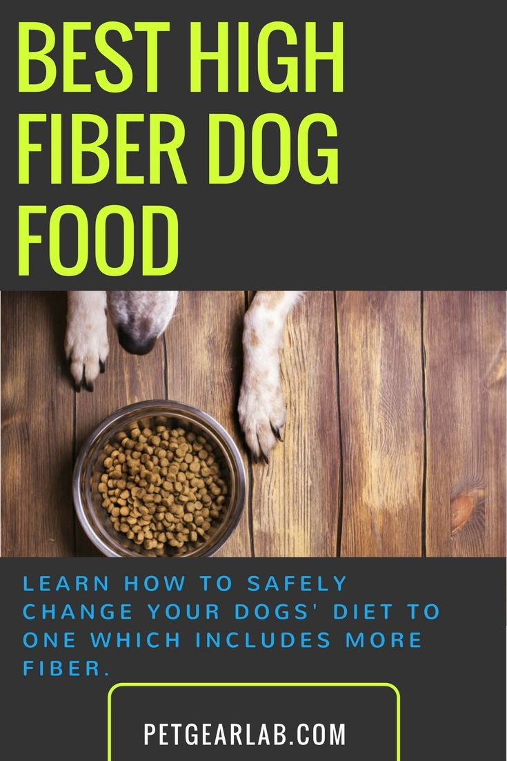 Best high fiber dog food rated grain free natural