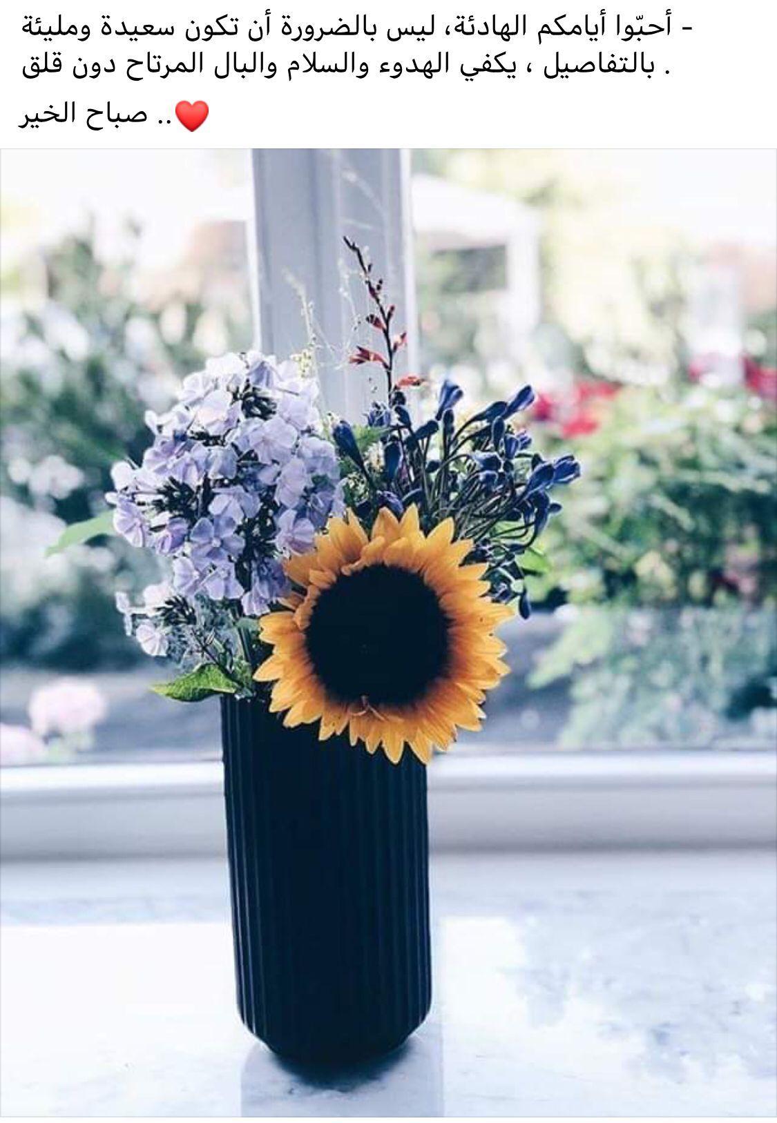صور صباح الخير Flowers Beautiful Bouquet Beautiful Lights