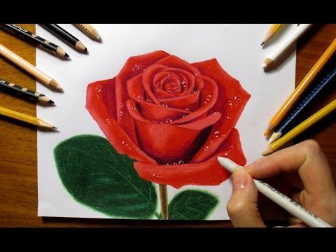 Drawing A Rose With Colored Pencils Youtube Roses Drawing Color Pencil Drawing Rose Drawing