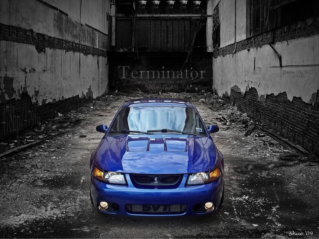 Pin By Unbridled Auto On Sweet Rides Ford Mustang Cobra Mustang Cobra New Edge Mustang