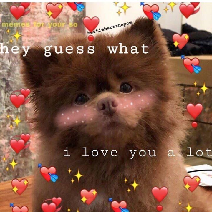 Goodnight People Cute Words Cute Memes Love Memes