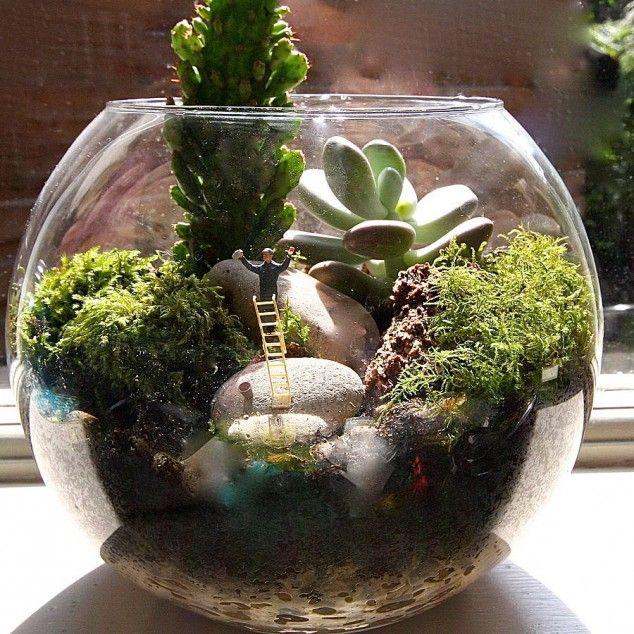 25 adorable miniature terrarium ideas for you to try diy crafty pinterest small water - Miniature terrarium decorations ...