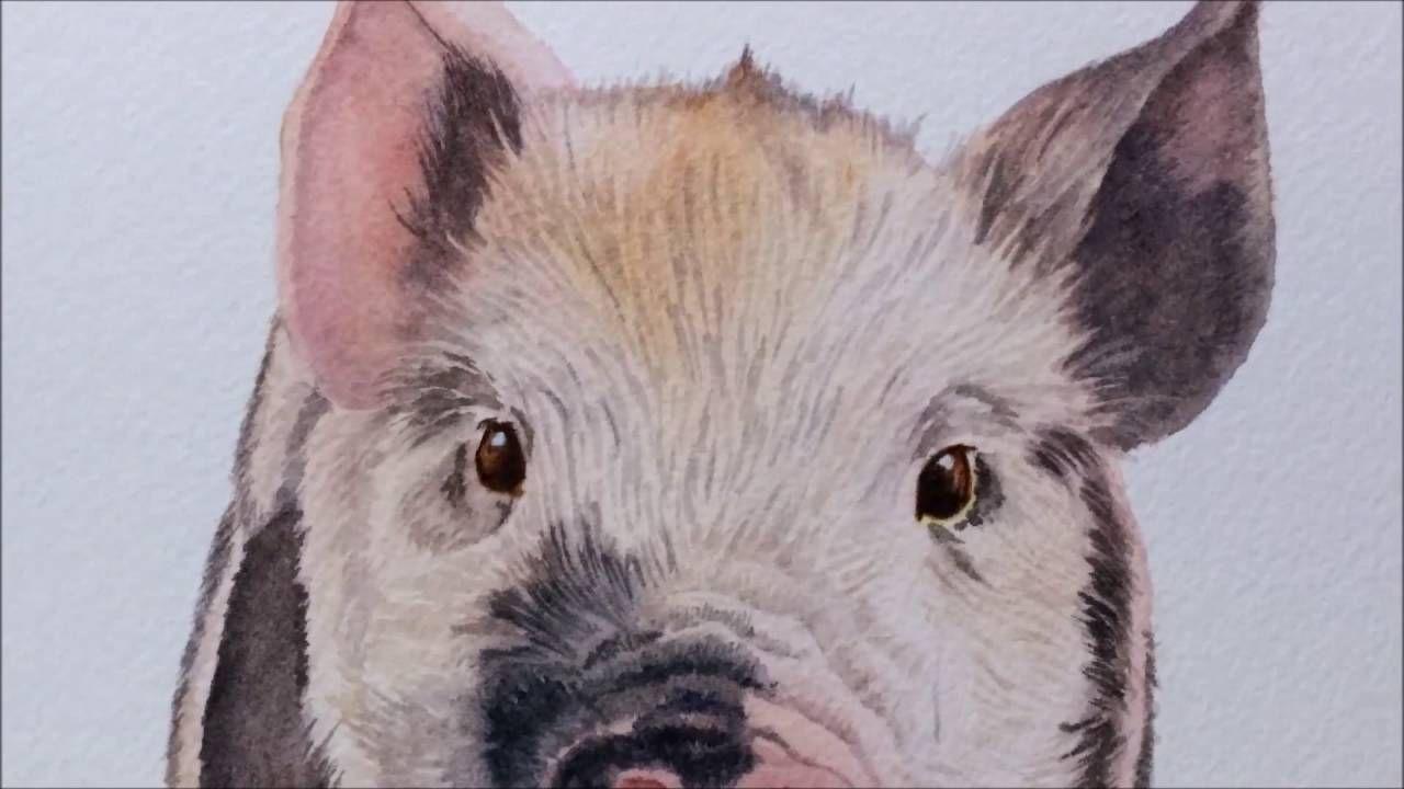 Baby Piglet Animals ~ Pig Gift Snout Cute Tiny Decor ~ Vivid Coaster