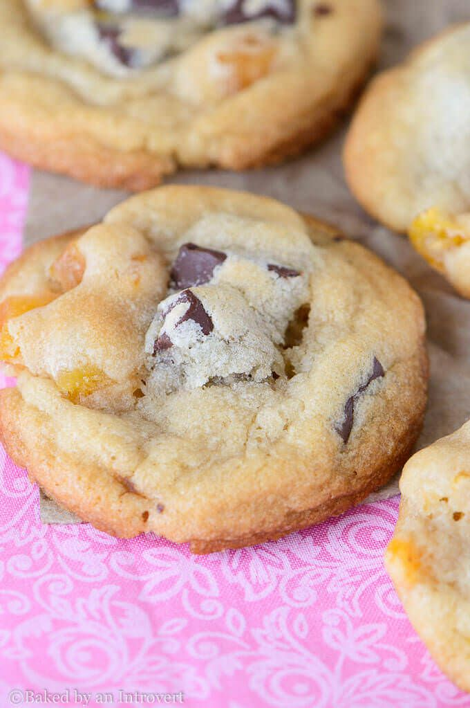 Chocolate Chunk Apricot Cookies - Perfectly chewy and thick chocolate chunk apricot cookies. One of the best flavor combinations ever!