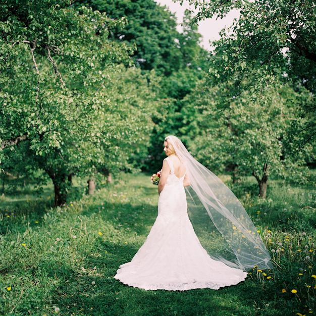 Cheap Wedding Dresses Wilmington Nc: First Look In The Orchard At Smith Barn In Peabody