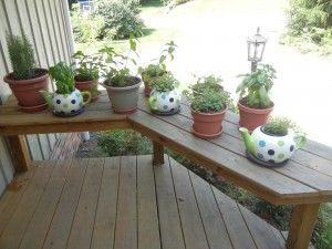 herbs to keep the mosquitoes away
