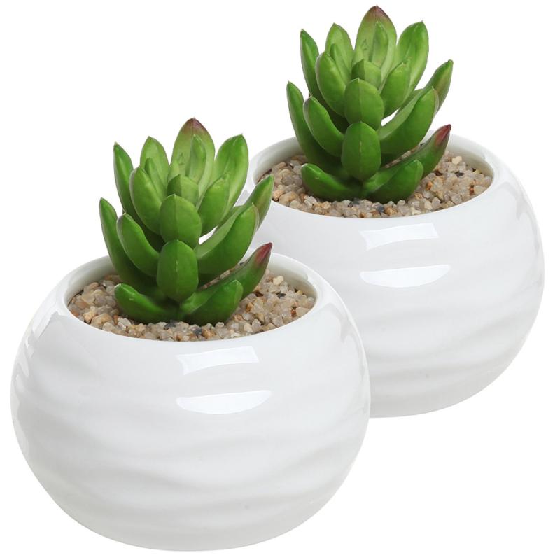 Set Of 2 Small Round White Ceramic Textured Succulent Plant Pots Decorative He Plant Pots Decorative Succulent Succulents Herb Containers Ceramic Texture