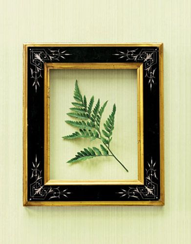 Empty Picture Frames, Framing Objects, Bold Wall Decor Ideas ...