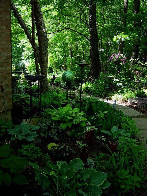 #garden #Isl #landscape #landscaping #Service #State #Tree ...