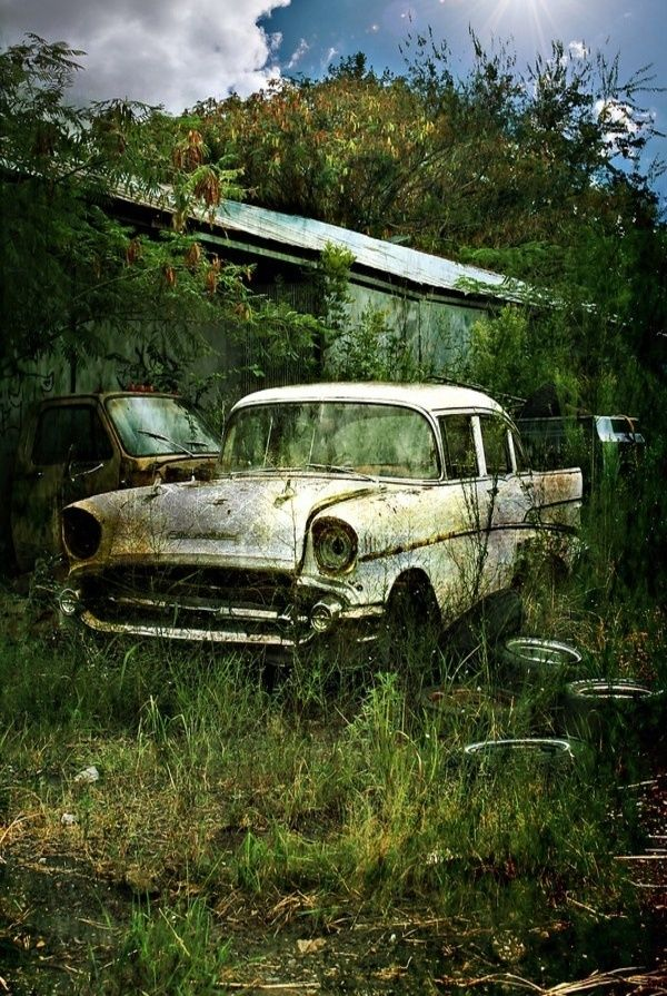 1957 Chevy #Abandoned #Forgotten                                                                                                                                                                                 More