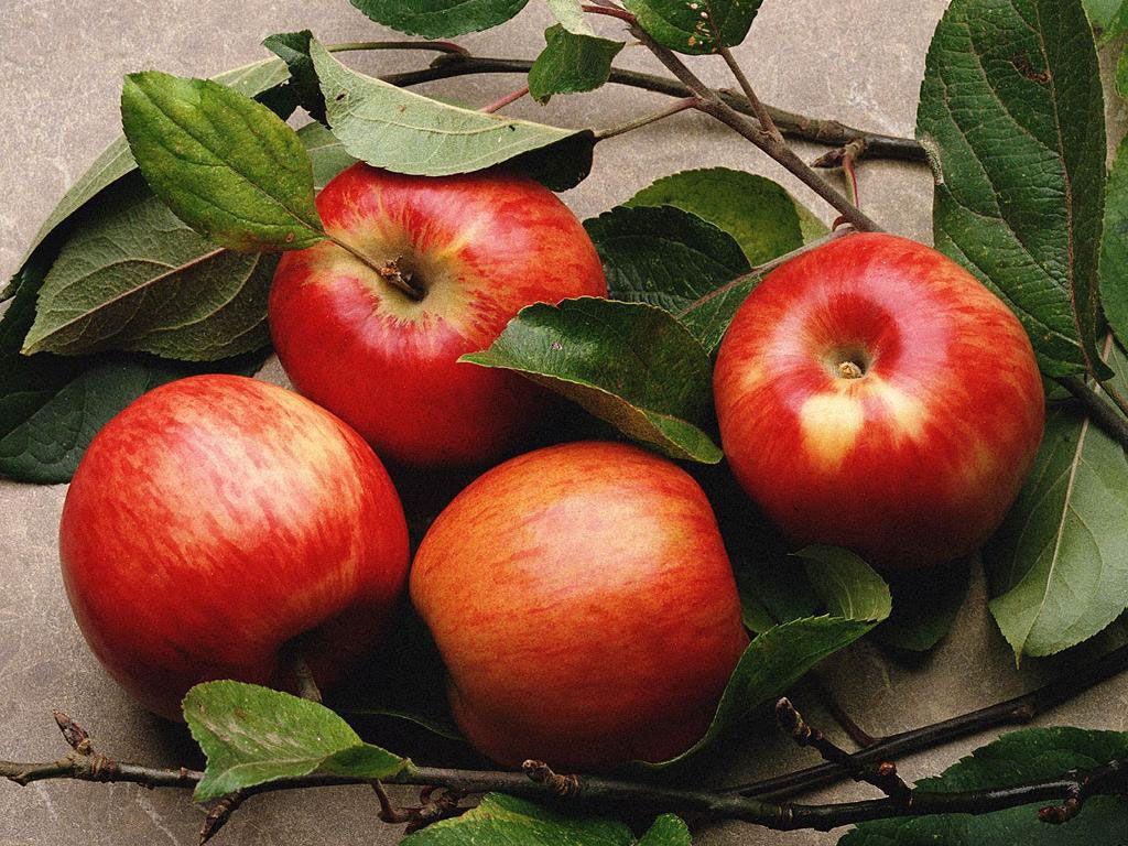 Cinque motivi per mangiare una mela al giorno