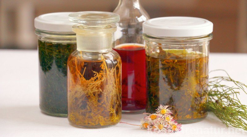 Photo of Do healing oil extracts yourself – you have to know that