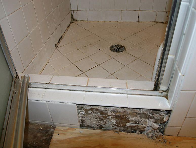 Black Mold Mud Set Shower Pan With Images Bathrooms Remodel