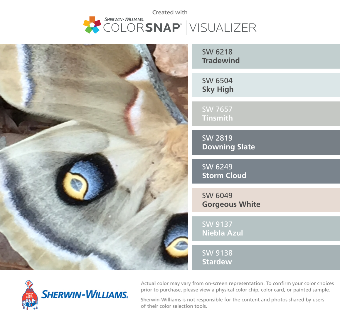 Sherwin williams paint colors sherwin williams 6249 storm cloud - I Found These Colors With Colorsnap Visualizer For Iphone By Sherwin Williams Tradewind Sw Sky High Sw Tinsmith Sw Downing Slate Sw Storm Cloud Sw