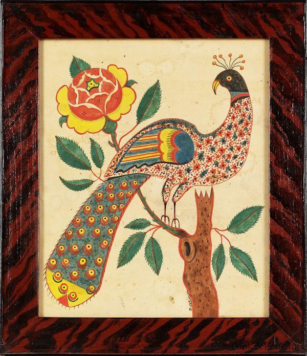 Ellinger peacock