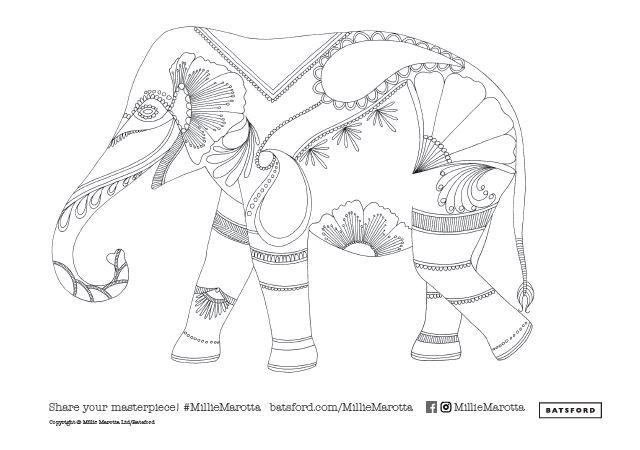 elephant-2 (640×450) | millie marotta coloring book