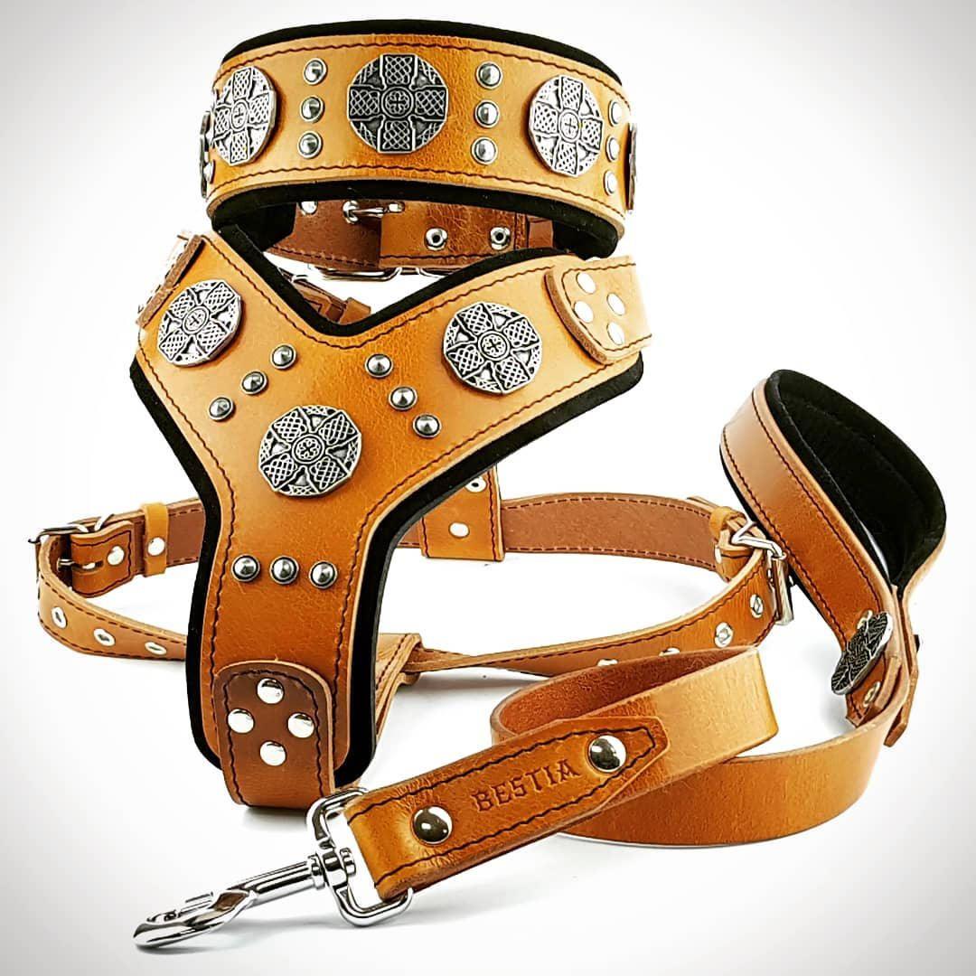 Bestia Full Maximus Silver Big Dog Set Harness Collar Lead