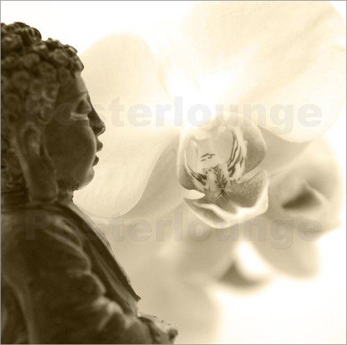 Buddha und Orchidee