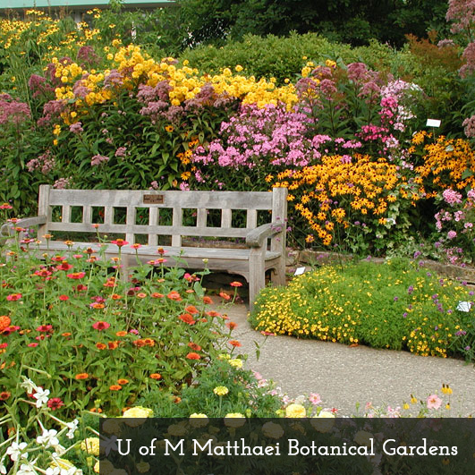 Matthaie Botanical Gardens, Ann Arbor, MI: These Gardens Offer A  Luxuriously Colorful Background