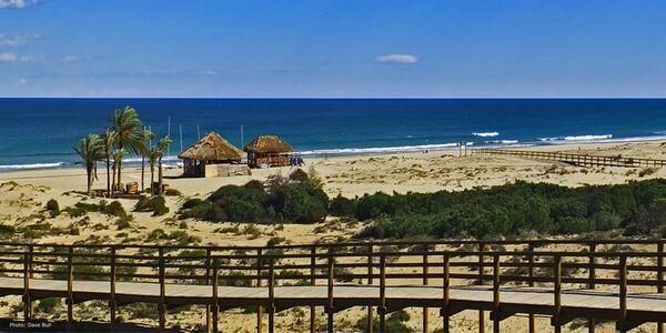 playa de Arenales del Sol #elche