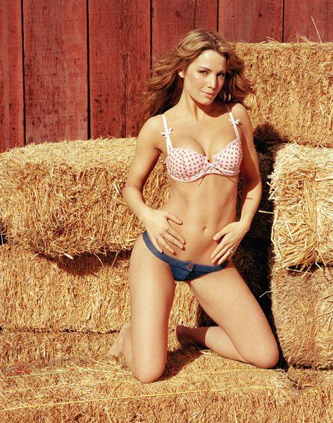 Erica Durance Bikini Pics