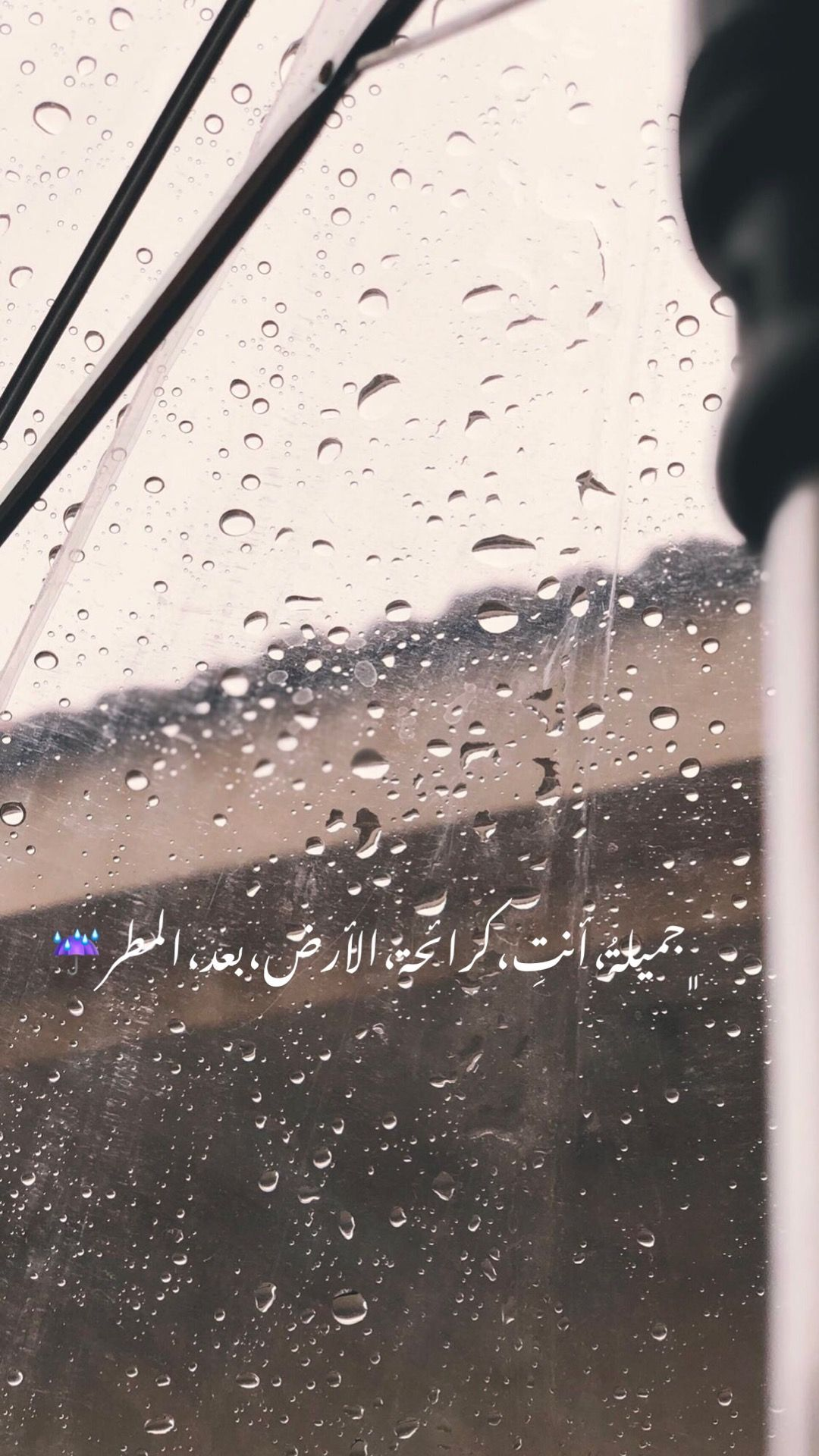 Pin By Semsem On يوميات One Word Quotes Rain Quotes Medical Quotes