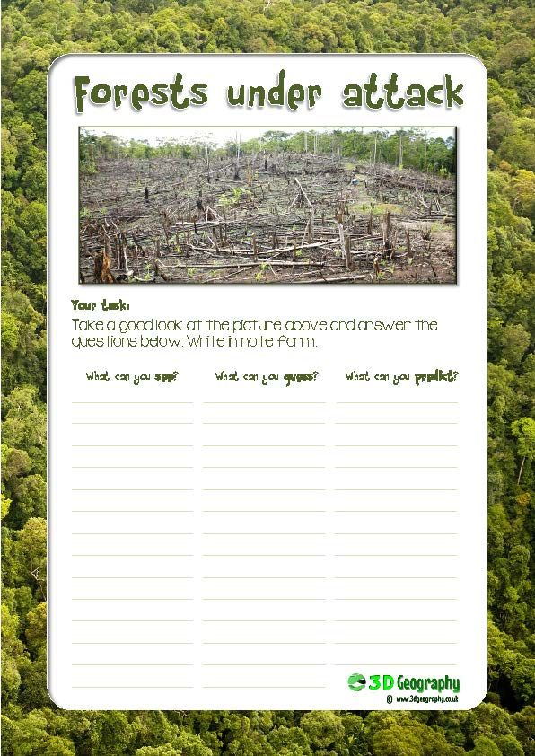 Helpful, child friendly worksheet looking at deforestation in the ...