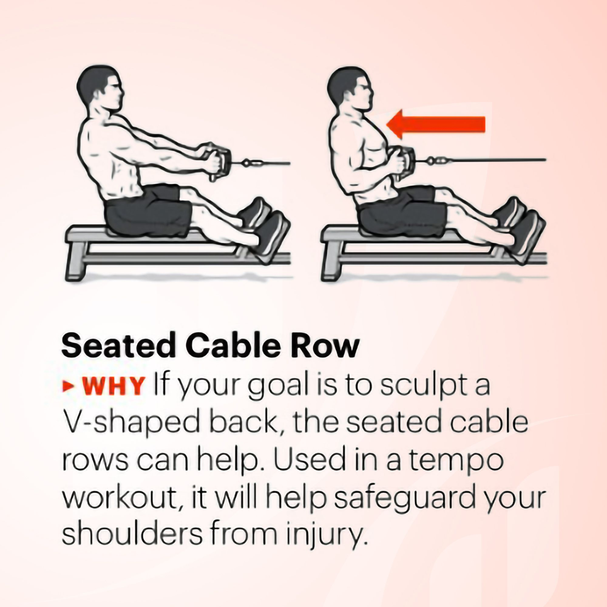 Seated Cable Row 💪 If your goal is to sculpt a Vshaped
