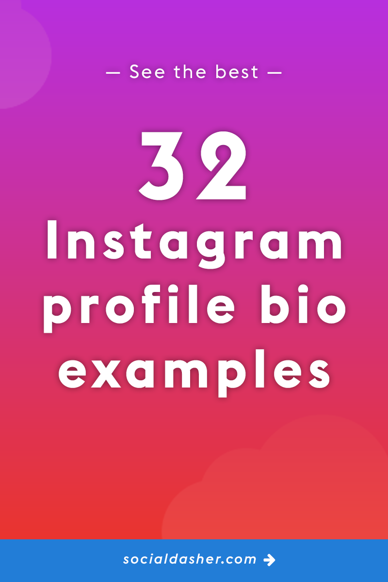 The Best 32 Instagram Business Bio Examples (Which You Can