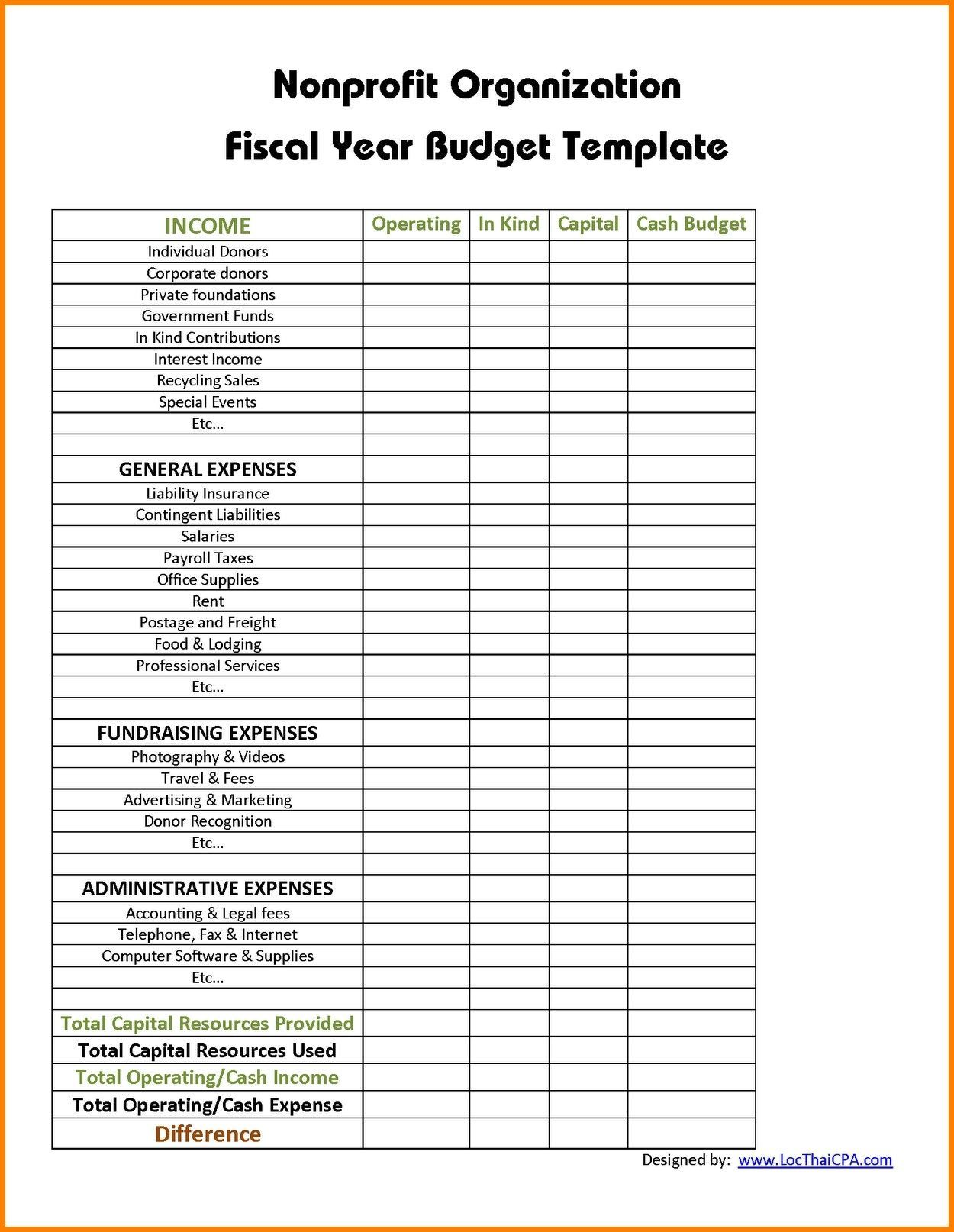 Non Profit Organization Balance Sheet Example