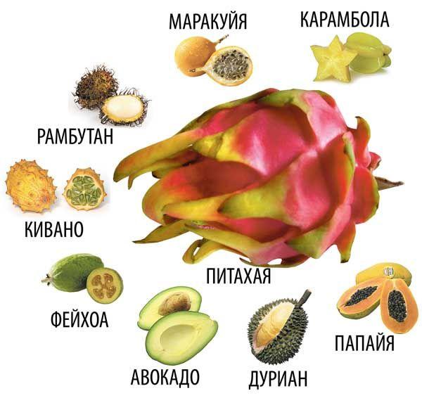 первую название экзотических фруктов с картинками мужик попросил мной