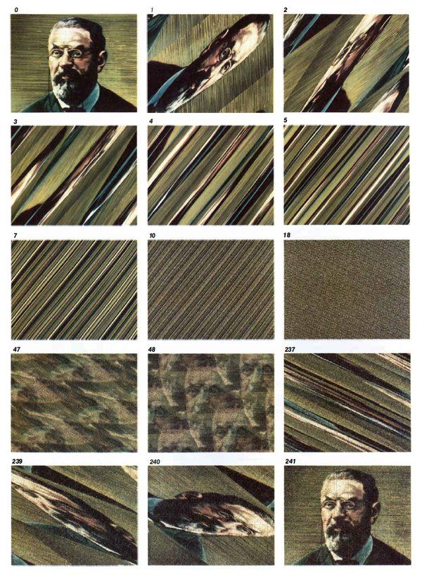 "Jonathan Basile on Twitter: ""Poincaré recurrence of a portrait of Poincaré - from ""Chaos"" - https://t.co/0B1eLzIWTQ https://t.co/qjgONh2MQ4"""