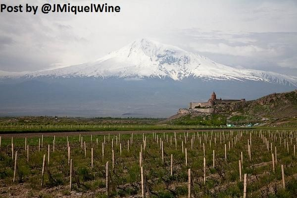#ARMENIA becomes 46th Country to join the OIV (Intl #Wine Organisation) http://www.armenews.com/article.php3?id_article=102861 …  #WineLover BEAUTIFUL!