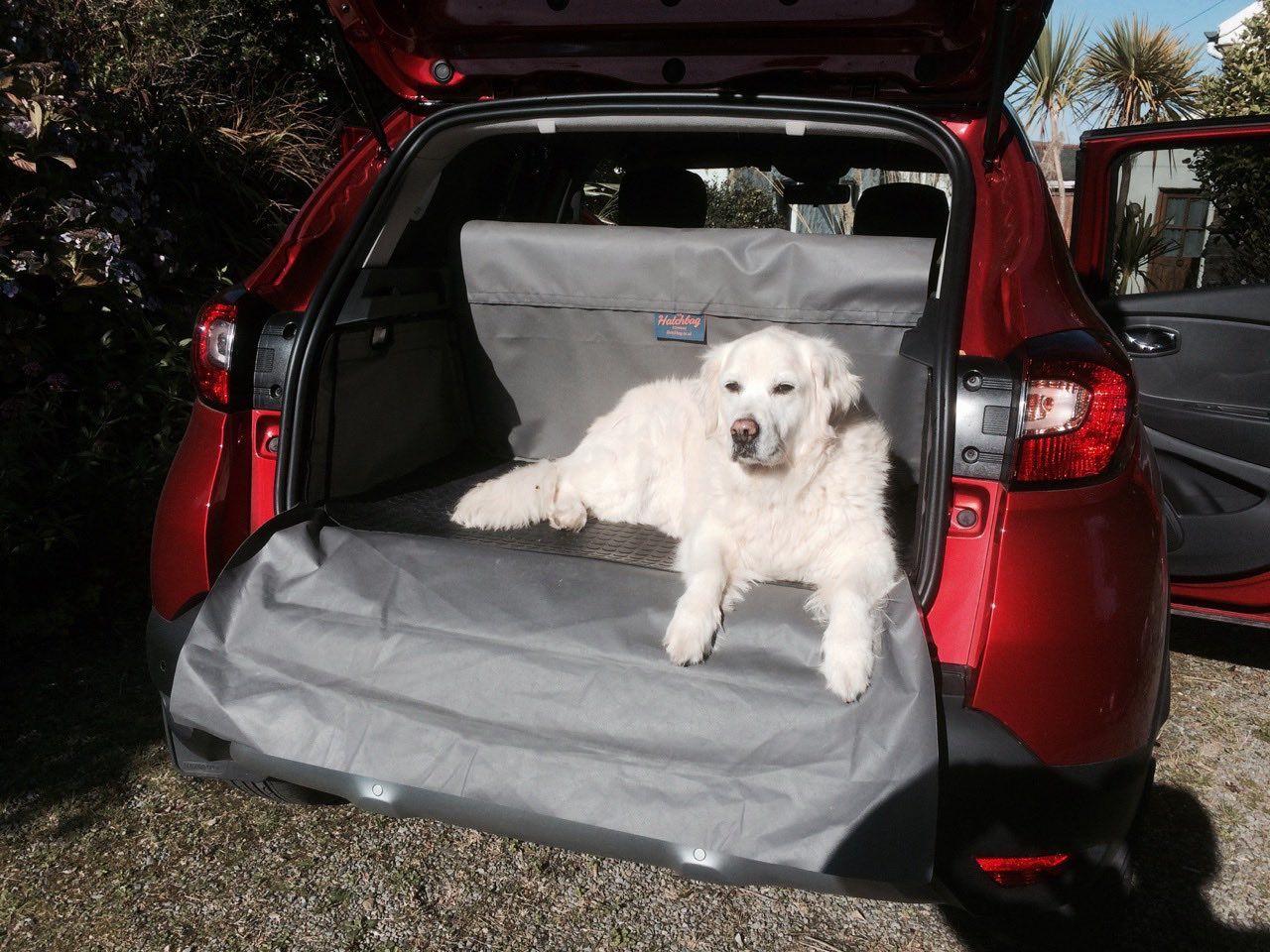Abi Geniesst Ihre Renault Captur Kofferraumschutz Dogs Animals