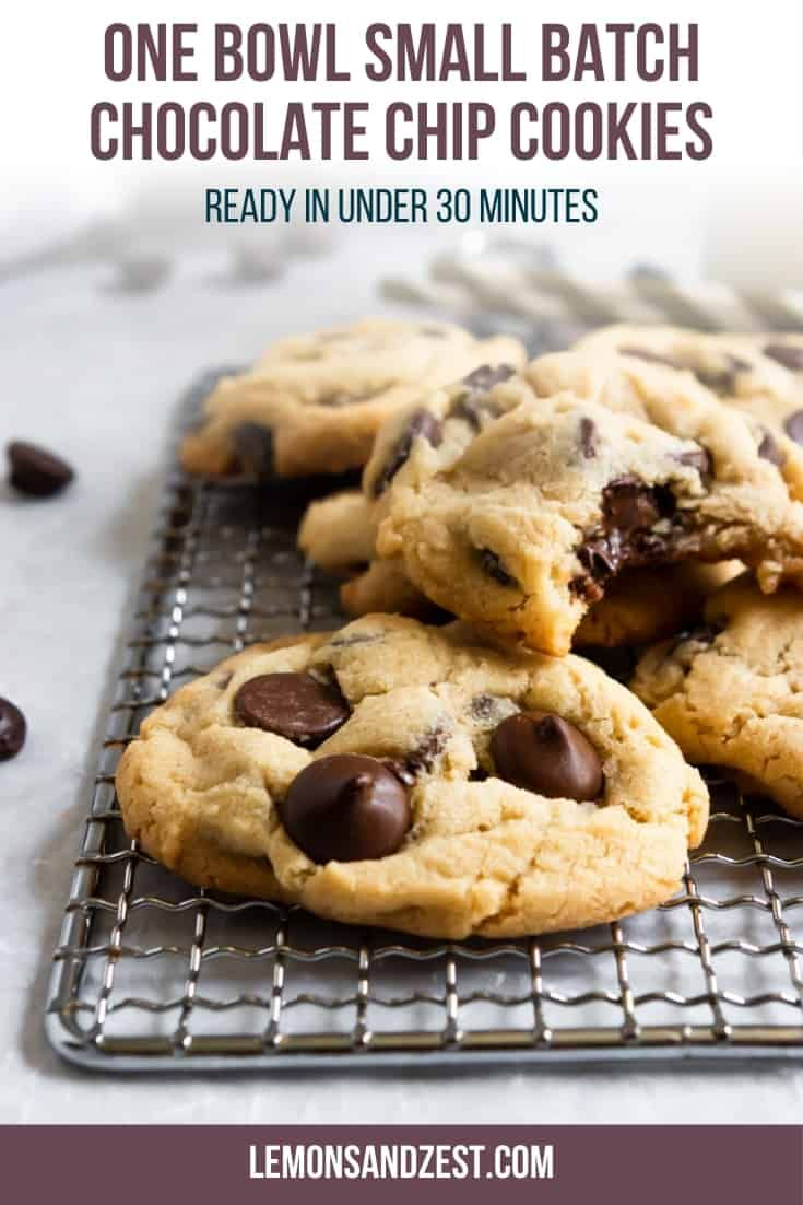 One Bowl Small Batch Chocolate Chip Cookies