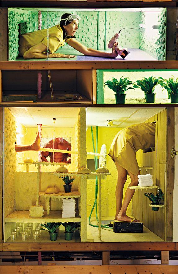 12 idées de ROTTENBERG Mika   art contemporain, art, contemporary art gallery