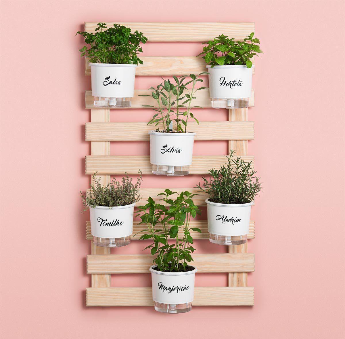 438051818 🚨 ALERTA DE MEGA DESCONTO!!! 🚨 - Tá afim de cultivar com beleza e ...