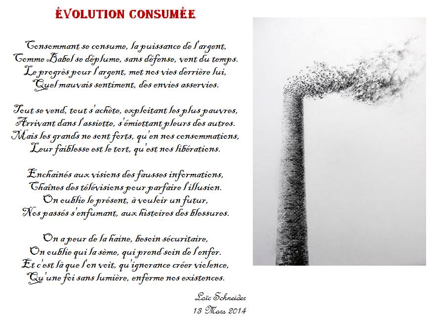 116 Révolution Consumée Poeme Poesie Artiste Peinture