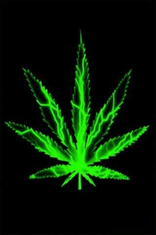 Weed Wallpaper Marijuana Leaves Live