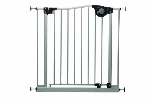 Dreambaby Magnetic Sure Close Gate Silver More Info Could Be