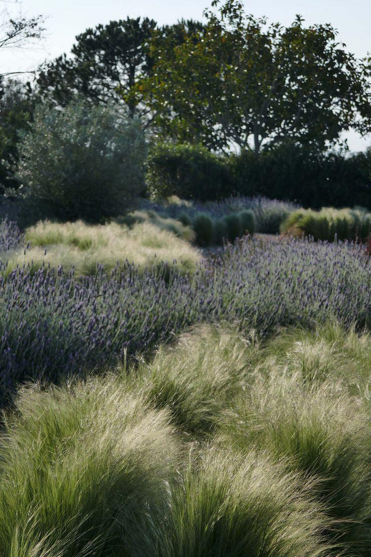 Photo of Mashamba Garden Design & Terrace Design – Unique Design Concepts