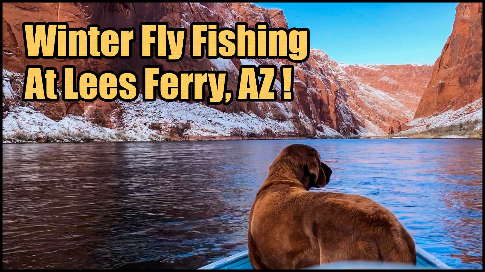 See video about Winter Fly Fishing for trout on Colorado