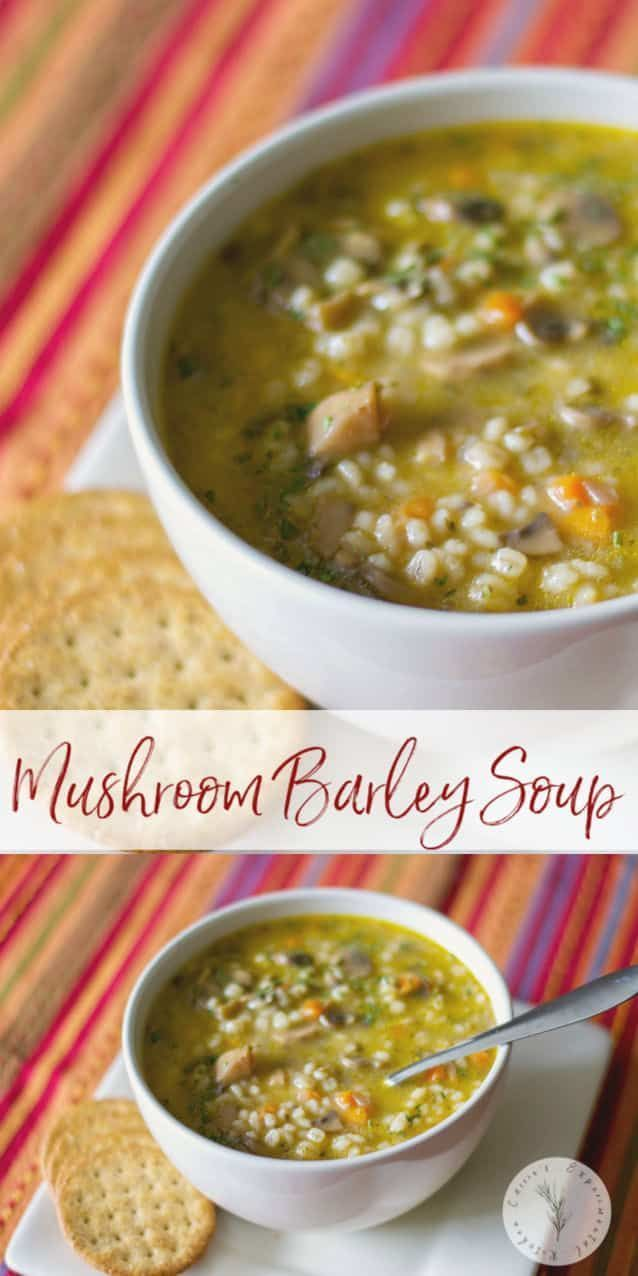 This vegetarian mushroom barley soup made with white mushrooms vegetables and vegetable broth is so hearty you can eat it as a meal