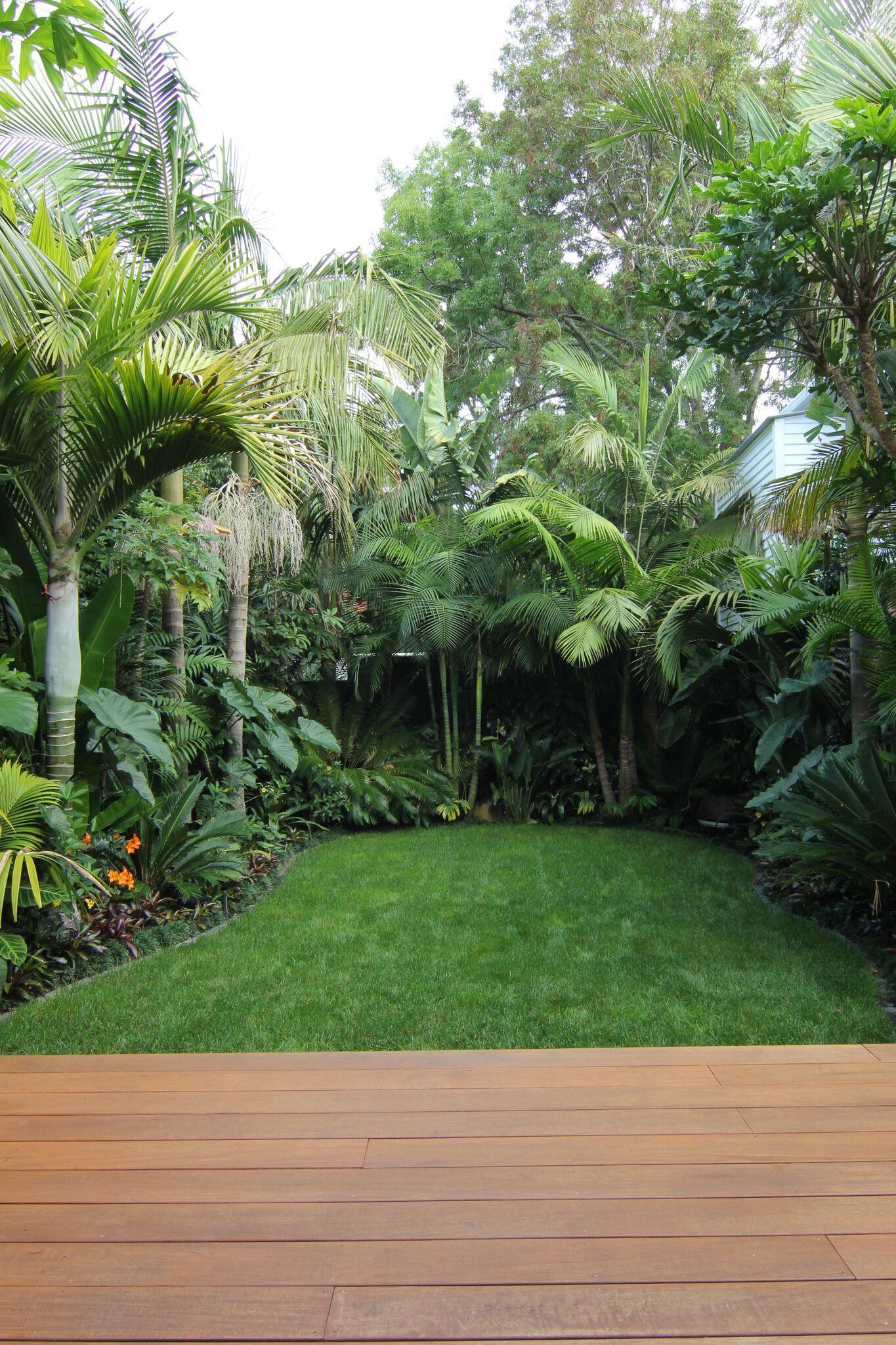 Photo of Herne Bay   Subtropical Paradise   J M Landscape Designer Design   Build   Maintenance
