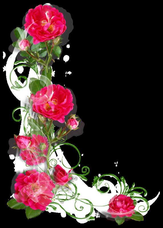 картинки цветов без рамки праздник воскресенья, тихо