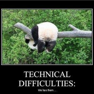 Funny Quotes About Panda Panda Cute Panda Panda Bear