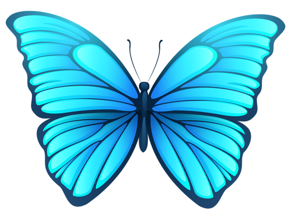 Butterfly Butterfly Drawing Butterfly Pictures Butterfly Images