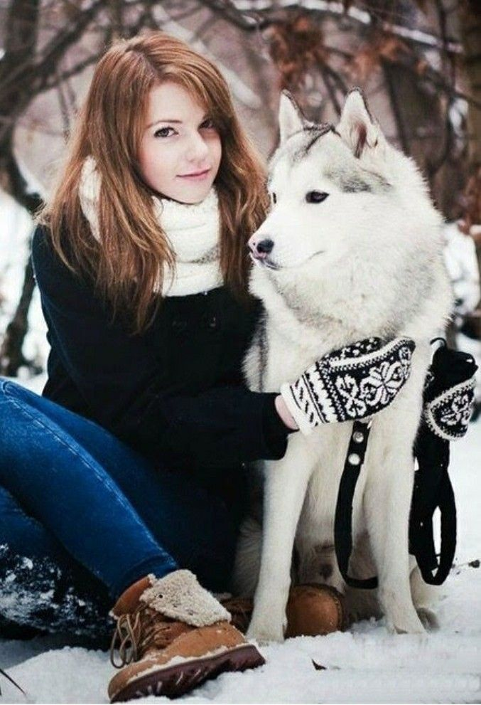 Pin by Лёля Galustyan on Красивые фото   Dogs, Animals, Husky