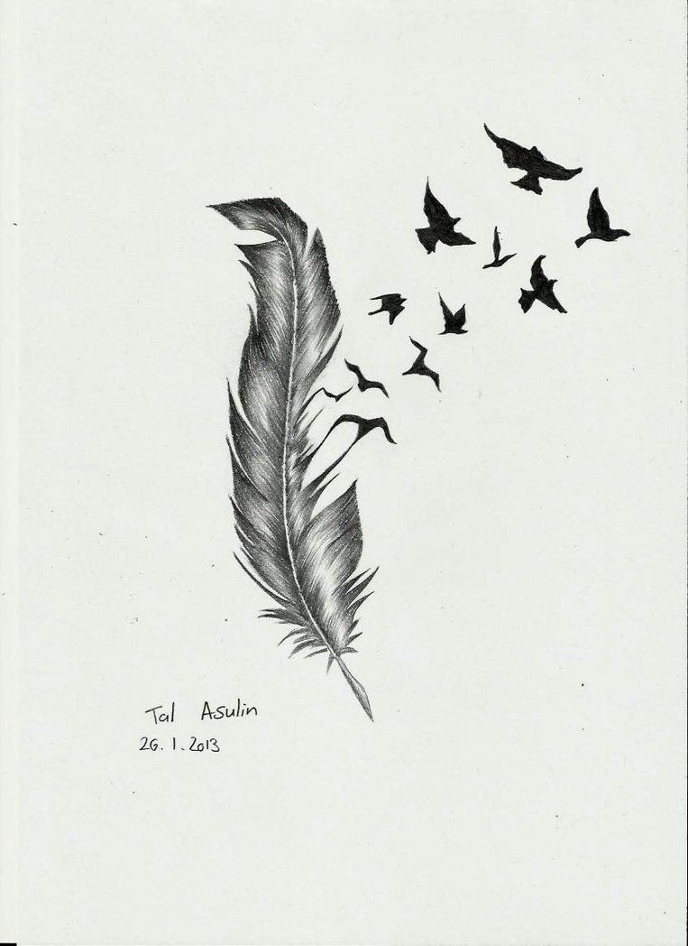 Birds Flying Tumblr Feather With Birds Flying Out