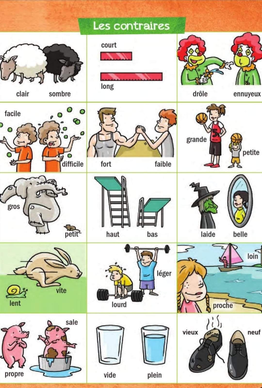 Les contraires | Cours de communication, Jeux de lecture ...